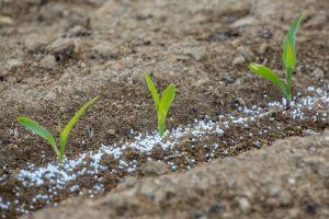 Análisis de riesgos ambientales en fábricas de fertilizantes